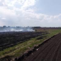 Рятувальники ліквідували загорання трав'яного настилу та очерету