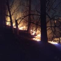 Чергові пожежі локалізовано