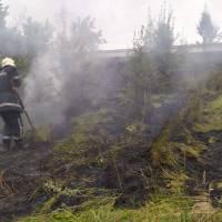 Повідомлення про загорання сухої трави