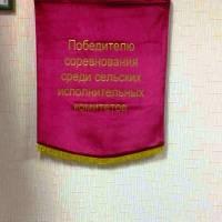 Сільська рада смт. Паричи Світлогорського району Гомельської області, Республіки Білорусь