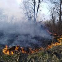 Внаслідок пожежі вогнем знищено  понад 26 га площі