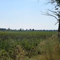 Перші кроки вирішення проблеми збереження водного плеса міста Яготина