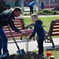 Всеукраїнська акція «Посади дерево»