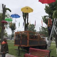 Алея парасольок у м. Яготині