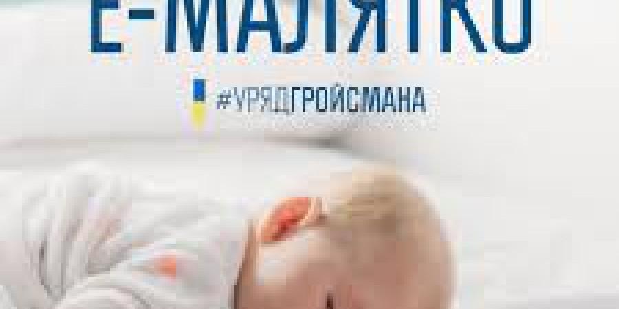 Павло Петренко: Проект для новонароджених «е-малятко» підтримано Урядом Володимира Гройсмана