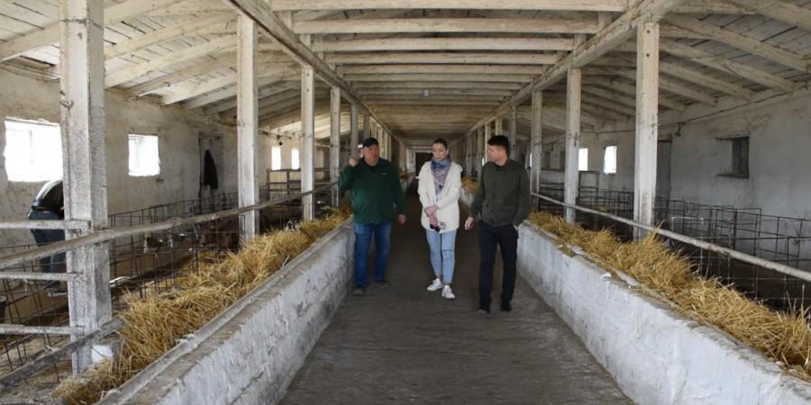 Анатолій НЕМЧЕНКО ознайомився з діяльністю ДП «Ілліч – Агро Донбас» агрохолдингу  HarvEast