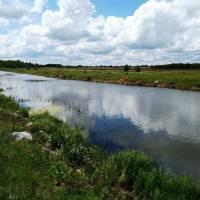 Річка Тня