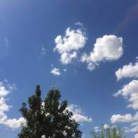 ...хмар білих...