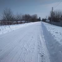 Ось так розчищена дорога у с. Рокитне-Донівці. Але перевізник ПП