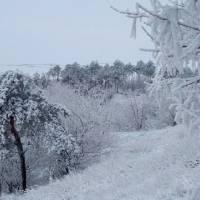 Зимові краєвиди села Максимівки