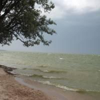 Узбережжя Кременчуцького водосховища