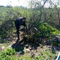 Акція чисте довкілля 21.04.2018