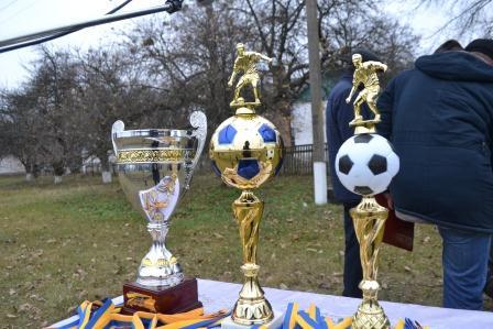 Оржиччина, футбол, турнір, АФ Оржицька, Володимир Несен