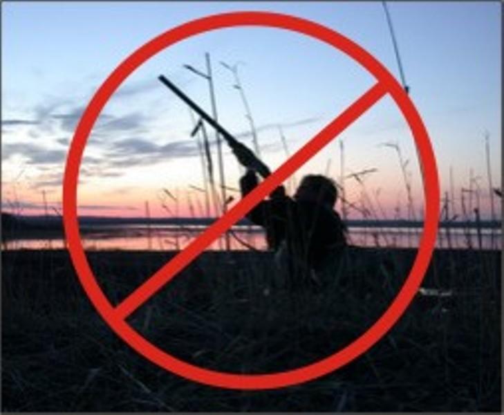 Оржиця, Нижньосульський, полювання, заборона
