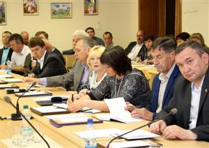 Оржиця, районна рада, Полтавщина, Координаційна рада, самоврядування