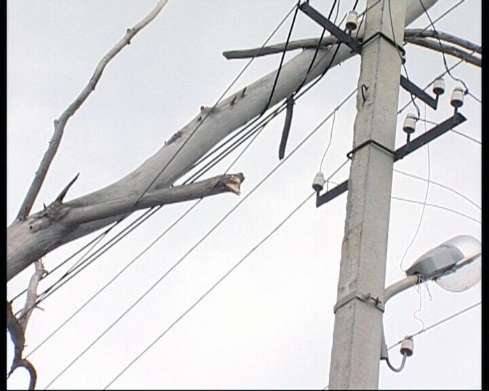 Оржиця, ради, електроенергія, аварії, дерева