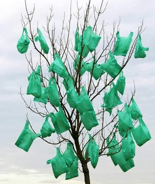 Поліетилен на дереві