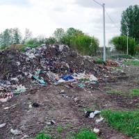 Несанкціоноване сміттєзвалище на вул. Степова