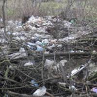 Під час ліквідації місць  складування сміття