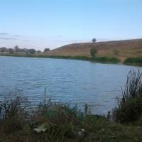 ставок в селі Червоне.