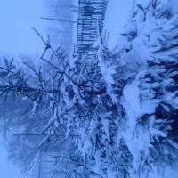 зима-2017 року