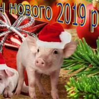 Новий рік 2018-2019