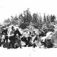 Крим 1988