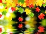Картинка осінь