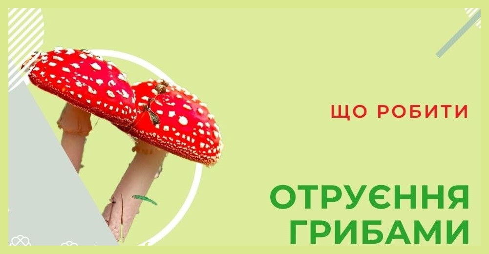 OTRUIeNNIa HRYBAMY PROFILAKTYKA I PERShA DOPOMOHA NOVYI KALYNIV