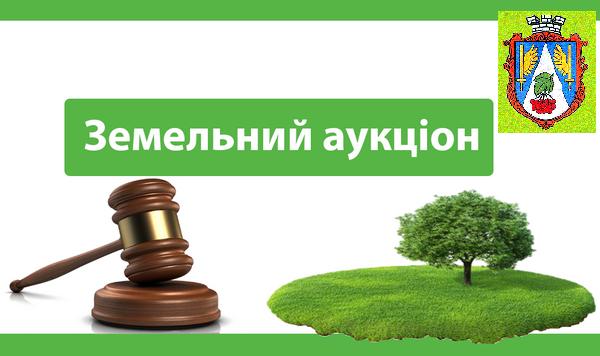 ZEMELNYI AUKTsION NOVYI KALYNIV BEREHY 0,5000