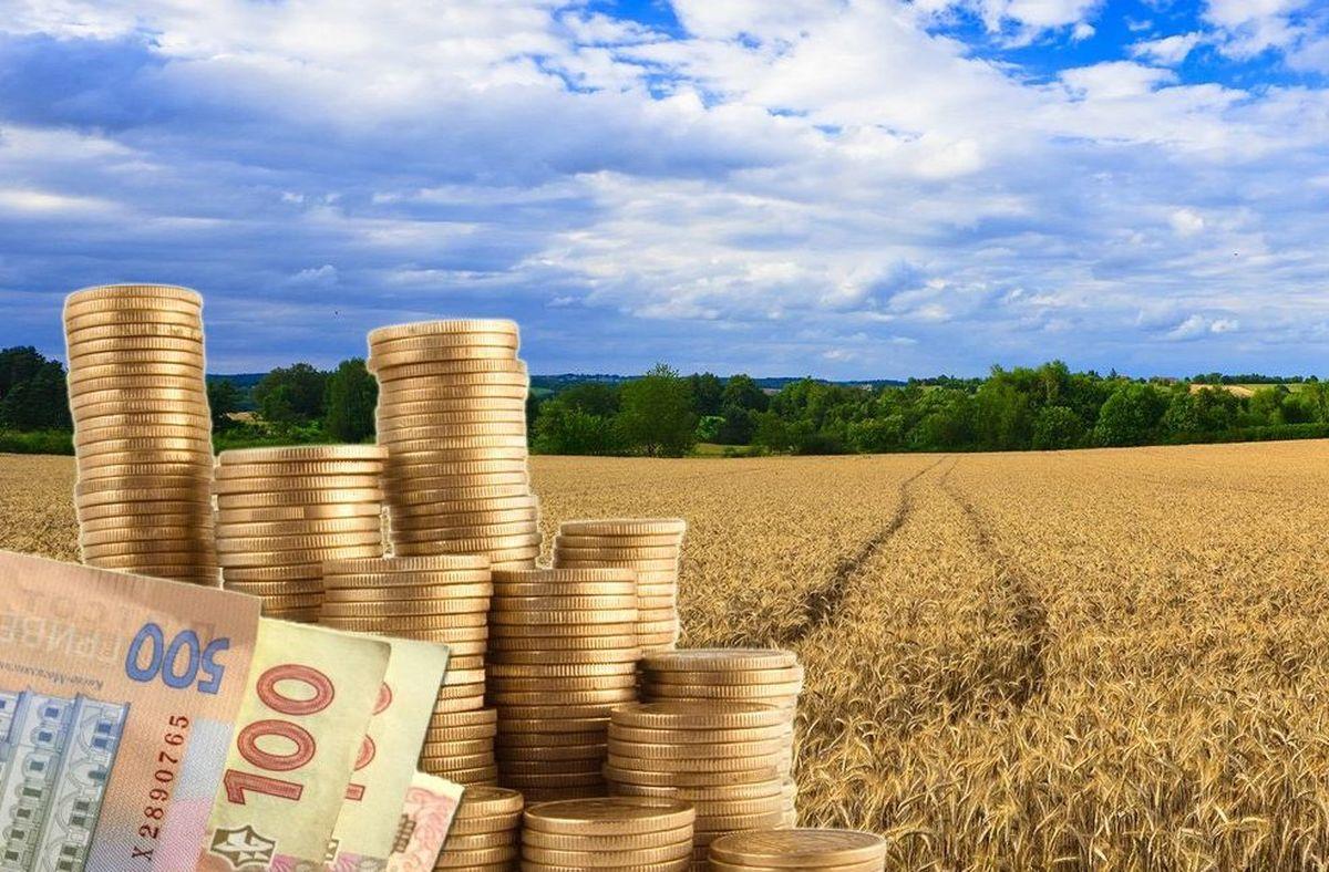 vykup zemel fermeramy 2021