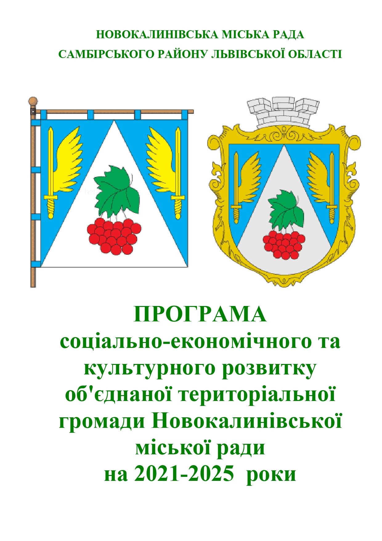 Програма соціально-економічного розвитку Новокалинівської ОТГ
