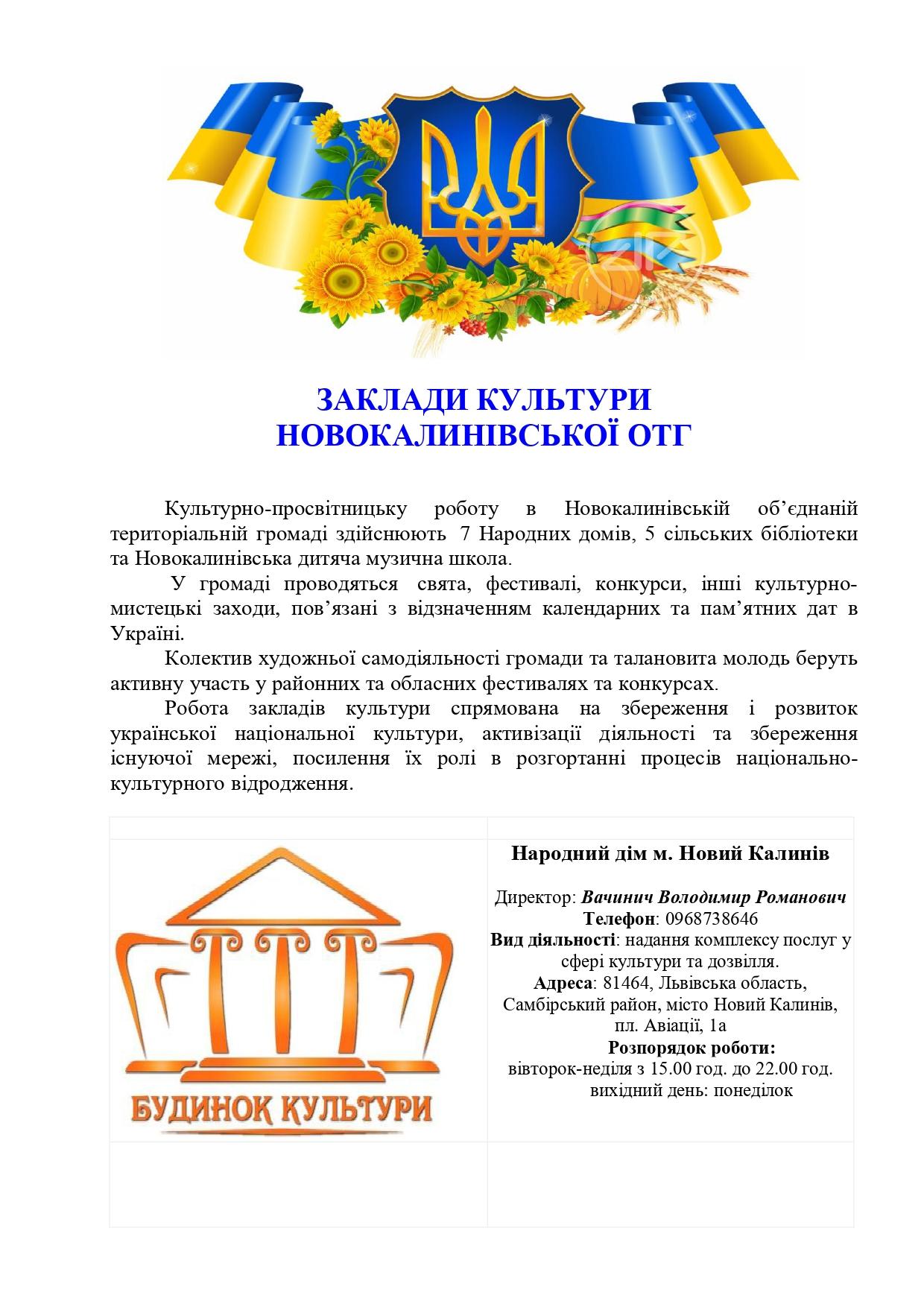 zaklady kultury Novokalynivskoi OTH