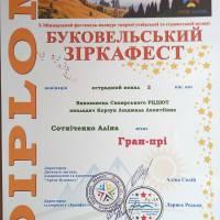 Сотнiченко_Алiна