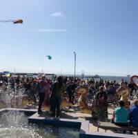 """Скадовський фестиваль """"Смажений бичок-2019"""" та міський велопробіг """"Скадовчани рулять!"""""""