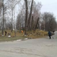 Весняна толока в центрі села Водяне!