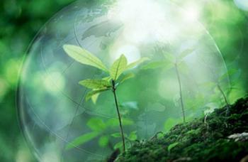 Порядок справляння екологічного податку