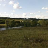 Місцевий ставок
