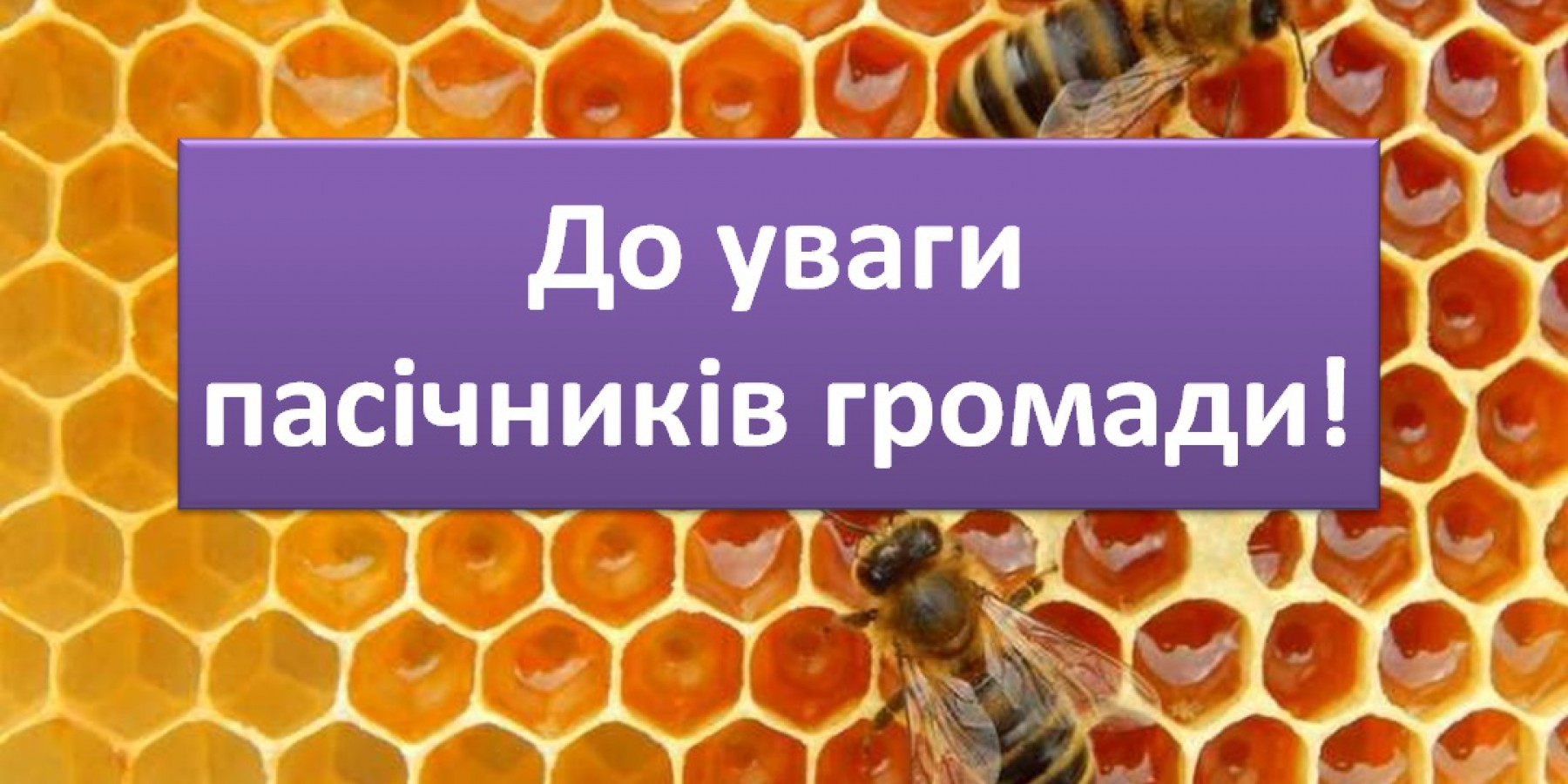 Дотація за бджолосім'ї