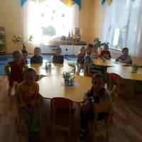ДНЗ №1. Зустріч з представниками Цуманської пущі