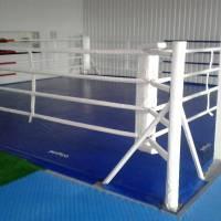 Секція боксу на базі ТОВ «Агробізнес»
