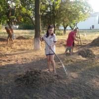 підготовка території для дитячого майданчика