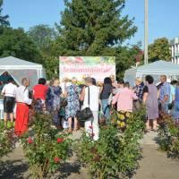 Великокопанівська громада на ярмарку в м. Олешки 26.08.17