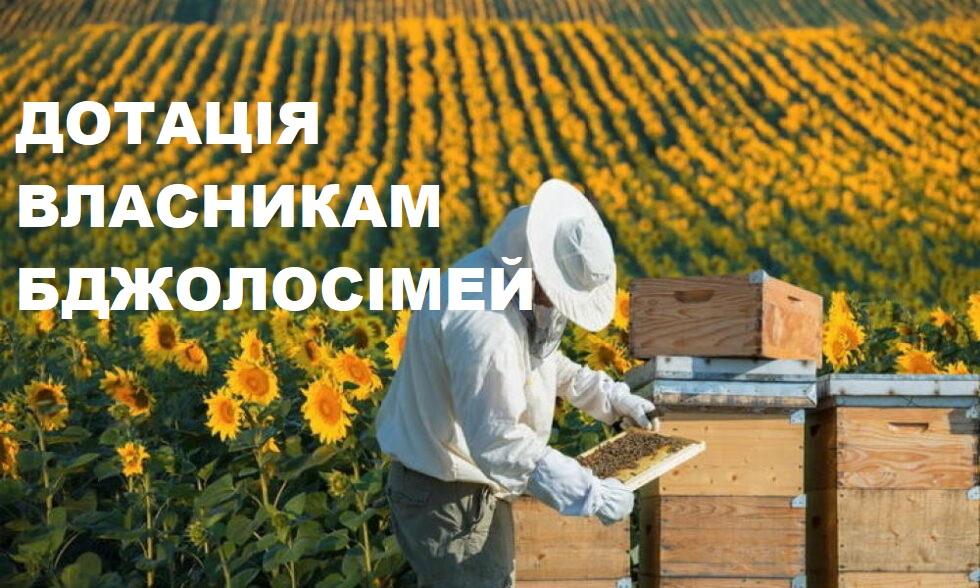 Про порядок оформлення дотації за бджолосім'ї