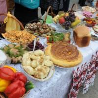 День села в Степанцях 204