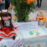 День села в Степанцях 208