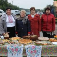 День села в Степанцях 211