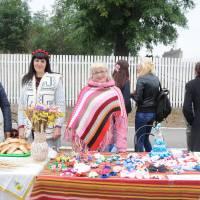 День села в Степанцях 245