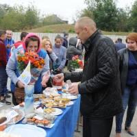 День села в Степанцях 261