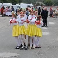 День села в Степанцях 287